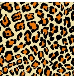 Leopard Pattern A vector image