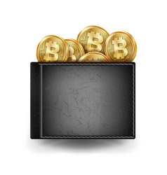 Realistic black bitcoin wallet investment vector