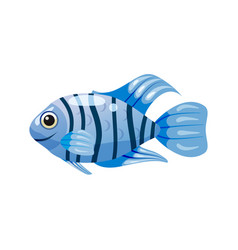 Tropical exotic coral blue fish bright colorful vector