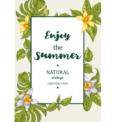 Tropical Summer Exotic Menu Fruits Card vector