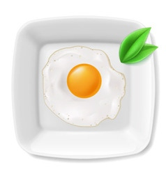 Fried eggs served on white plate vector image vector image