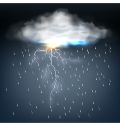 Cloud with rain and a lightning bolt vector image