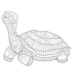 Adult coloring bookpage a cute turtle vector