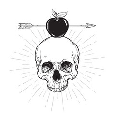 human skull and apple pierced with arrow line art vector image