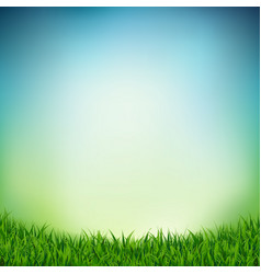Landscape with green grass vector