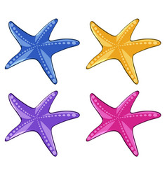 starfish in four different colors vector image