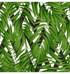 Tropical Palm leaves seamless vector image vector image