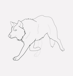 Wolf icon line element of vector