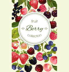Berry vertical banner vector image