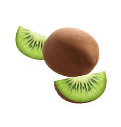 Kiwi realistic fruit composition vector