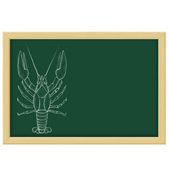 Lobster sketch chalk on green blackboard vector