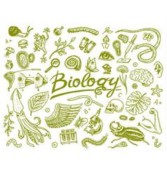 Scientific laboratory in biology icon set vector