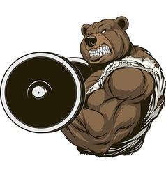 Strong ferocious bear vector