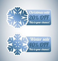 Winter sale labels with snowflake vector image