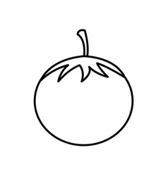 silhouette vegetable tomato icon vector image vector image