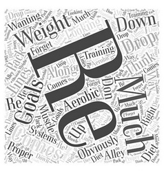 aerobic systems Word Cloud Concept vector image vector image