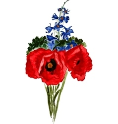 Bouquet of poppies and delphinium vector image vector image