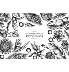 Floral design with black and white banana palm vector