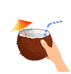 half coconut in hand vector image