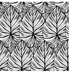 ink hand drawn seamless pattern with exotic plant vector image
