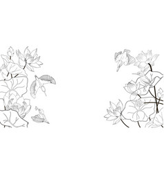 lotus flowers and kingfishers a black and white vector image