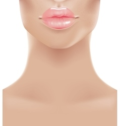Sweet pink sexy lips vector image
