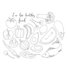 Various of hand drawn Eco bio healthy food vector