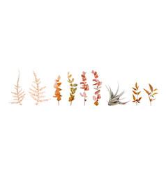 watercolor floral autumn designer element set leaf vector image