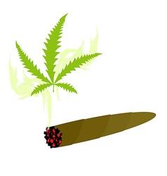 Cigarette with marijuana knabis sheet and smoke vector