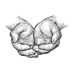 Cupped hands folded arms sketch vintage vector