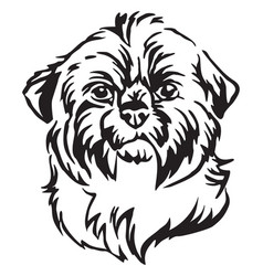 Decorative portrait of dog shih tzu vector