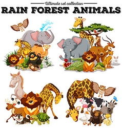 Different kind of rainforest animals vector