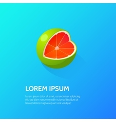 Fruit Citrus Isometric Icon vector