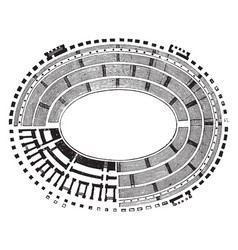 Ground plan colosseum representation of vector