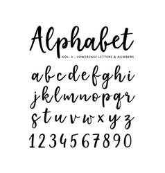 Hand drawn alphabet brush script font vector