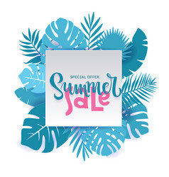 monstera palm leaves summer sale banner design vector image
