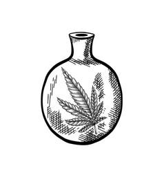 Natural herbal medicine glass bottle with a leaf vector
