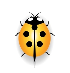 Ladybug icon yellow ladybug with five black dots vector image
