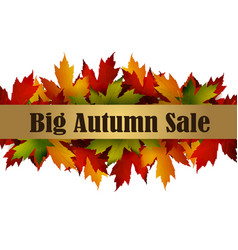 Autumn special sale poster isolated vector