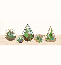 Composition home decorative plants in various vector
