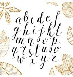 hand drawn alphabet Handwritten script vector image