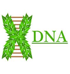 logo of dna for medical vector image