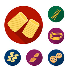types of pasta flat icons in set collection for vector image