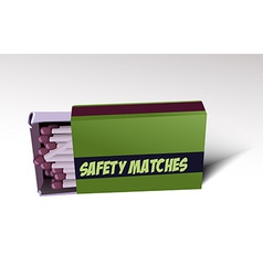 Safety matches vector image