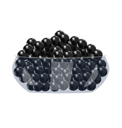 Black caviar in glass bowl isolated on white vector
