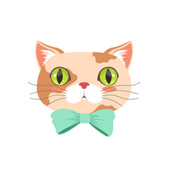 cute cat wearing lturquoise bow tie funny cartoon vector image