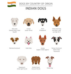 Dogs by country of origin indian dog breeds vector