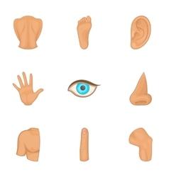 Human anatomy icons set cartoon style vector