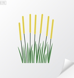Reeds on white background vector