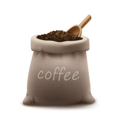 Roasted coffee beans in vector